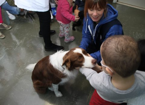 Rimini, in Oncoematologia pediatrica arriva la pet therapy