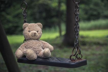 Il pedofilo faceva il volontario in una onlus a scuola