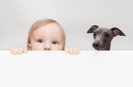 """""""Che razza di bambina è?"""" L'equivoco del 'cucciolo' al parco..."""