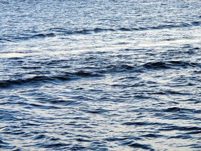 Mosè è nato in mezzo al mare. La sua casa ora è Bologna