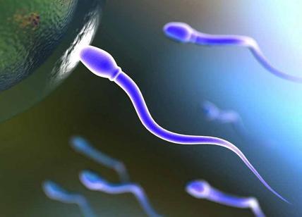 Pillolo, la contraccezione è maschile. In Emilia-Romagna si cercano coppie per la sperimentazione